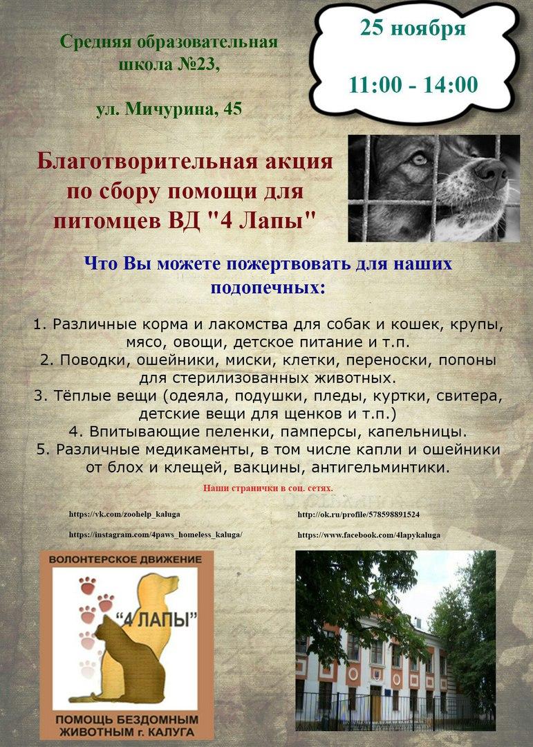 chetyre-lapy-22-11